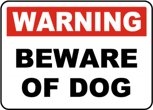 Massachusetts dog bite injury attorneys, Ballin & Associates